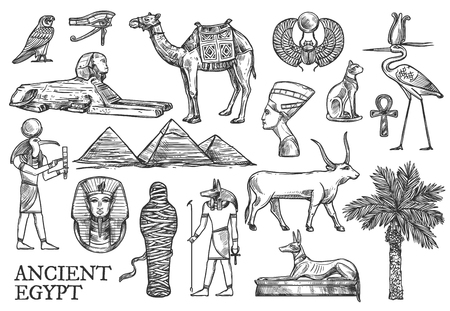 Egypt symbols and landmarks vector sketches. Great Pyramids and Sphinx, Ankh and bull, mummy and dog, cat and camel. Tutankhamun and scarab, eye of Horus, Anubis and Nefertiti, date palm and ibis  イラスト・ベクター素材