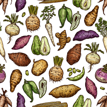 Exotic vegetables and roots seamless pattern. Vector arrakacha and swede, scoroner and chayote, artichoke and pea, mini corn, celery and beetroot, turnip and radish, parsnip and parsley