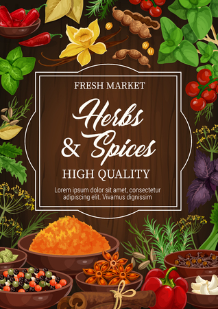 Seasonings, herbs and spices, dried condiments. Vector basil and vanilla, chili pepper and cinnamon, anise and allspices, garlic and cherry tomato, celery and rosemary. Dill and cardamom, clove