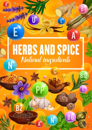 Vitamins in spices and herbs, organic seasonings and herbal cooking flavoring ingredients.