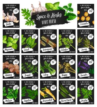 Spices and herbs farm market price menu, organic seasonings and herbal cooking flavoring. Vector garlic, coriander and marjoram, lemongrass spice and lavender herb, angelica and melissa condiment Ilustracja