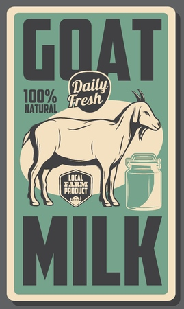 goat milk products, dairy farm 100 percent natural organic food vintage poster. Vector cattle farming milk production or dairy shop, goat domestic animal and milk can Illustration