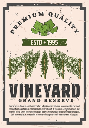 Wine making house and wine grand reserve vintage poster or bottle label. Фото со стока - 121246078
