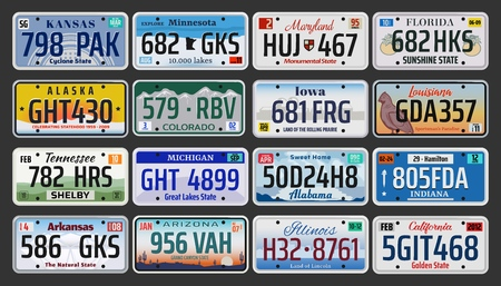 USA vehicle registration plates with state symbols.