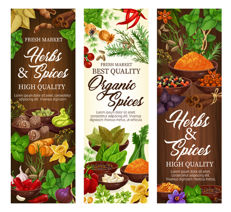 Spices and herbs, organic cooking seasonings and herbal culinary flavoring.