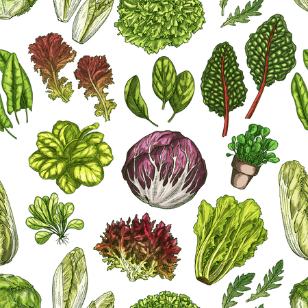 Salad leaves and culinary herbs seamless pattern, vegetable greens