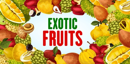 Exotic fruits vector banner with tropical berries frame border. Durian, quince and pomelo, sweetsop, ackee and salak, morinda, kumquat and chambakka, natural vitamin juice and vegetarian food design