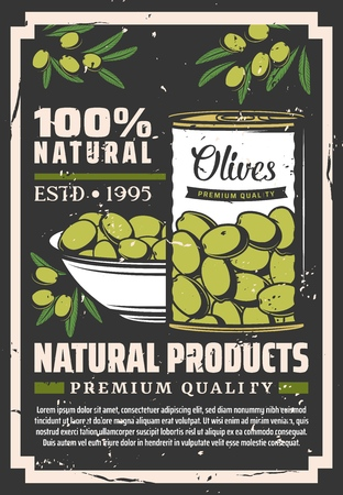 Olives natural food product retro vector poster with can and bowl of pickled green fruits and olive tree branches. Greek or Italian vegetable seasonings, dressing and mediterranean cuisine ingredients Banco de Imagens - 124097510