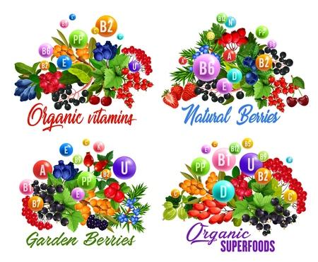 Natürliche Vitamine in Garten und Waldbeeren Vektorgrafik