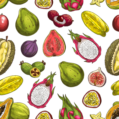 Exotic fruits vector seamless pattern background with sliced tropical berries. Papaya, feijoa and fig, carambola, passion and dragon fruits, lychee, durian and guava sketches. Fruity backdrop design
