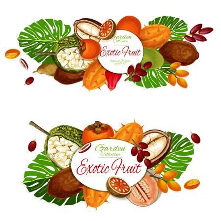 Poster mit exotischen Früchten und Beeren Vektorgrafik