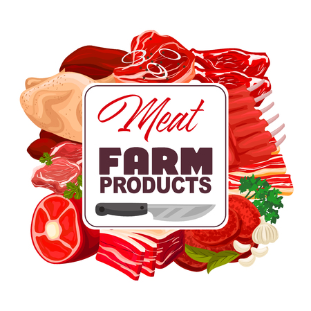 Meat, farm food products with spices and herbs vector poster. Beef steak, pork ribs roast and chicken, ham, bacon and burger patty, lamb chops, garlic parsley and bay leaf. Butcher shop design