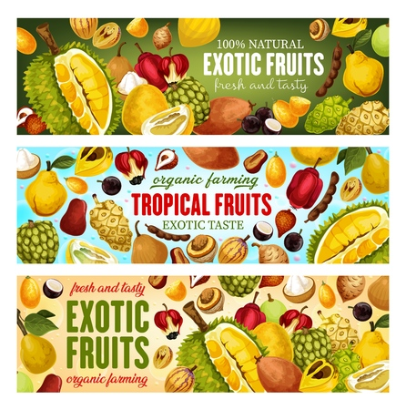 Exotic fruits and tropical berries  banners design.