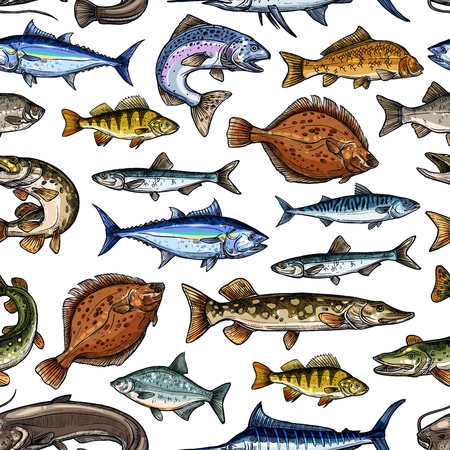 Fish sketch seamless pattern. Vector fishing marlin, scad or horse mackerel, scomber or anchovy and tuna, sardine and sea bass or dorada bream, salmon and flounder or pike fish pattern background Фото со стока - 123798980