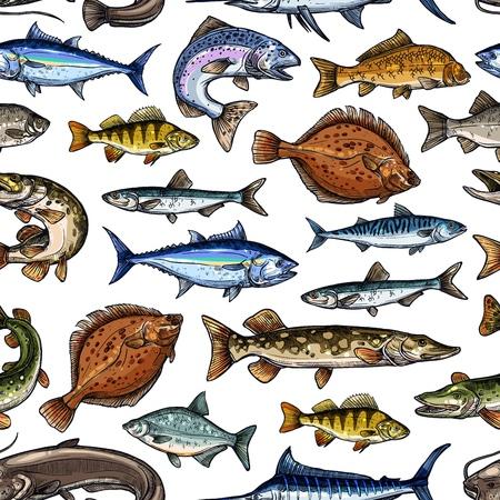 Modèle sans couture de croquis de poisson. Marlin de pêche vectorielle, scad ou chinchard, scomber ou anchois et thon, sardine et bar ou dorade, saumon et flet ou brochet de fond