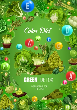 Color diet green food healthy nutrition. 向量圖像