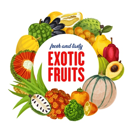 Exotic fruits harvest, tropical durian, persimmon or akebia and star apple with champakka or bergamot.