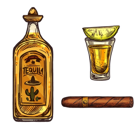 Tequila with lime and cigar sketch icons. Vector Mexican traditional alcohol drink bottle with sombrero cap and cactus and cigarette or Cuban Havana cigar