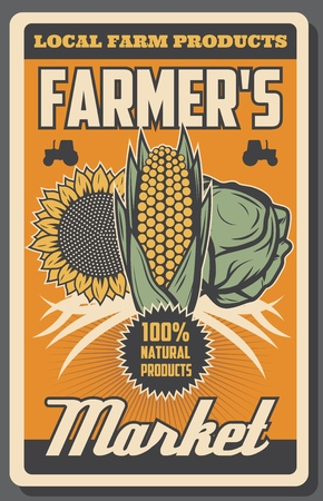 Farm harvest of organic vegetables farming and gardening. Vector vintage poster with tractors, farmer organic corn, natural sunflower and cabbage food products
