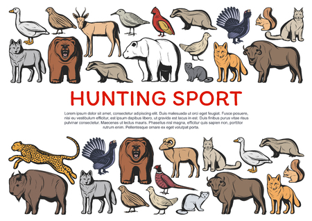 Hunting sport animals and birds vector banner of hunter club design. Wild bears, wolves and african jaguar, buffalo, antelope and bison, fox, goose and quail, ox, lynx and squirrel, grouse and badger Imagens - 120960559