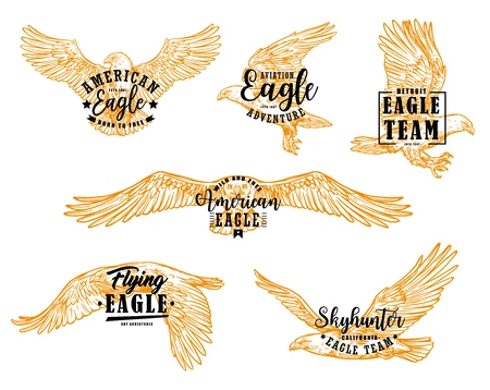 Eagle bird sketches with letterings. Vector hawk, falcon or american eagle spread wings, flying birds of prey heraldic emblems and mascots design Imagens - 120960561