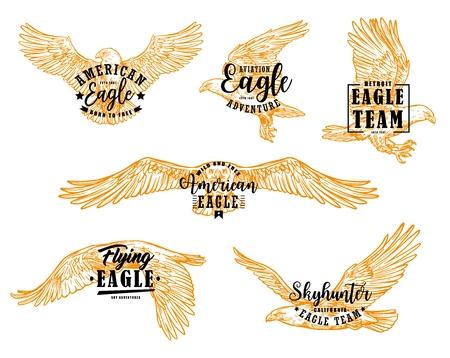 Schizzi di uccelli Aquila con scritte. Vector falco, falco o aquila americana ad ali spiegate, uccelli rapaci volanti emblemi araldici e mascotte design Vettoriali