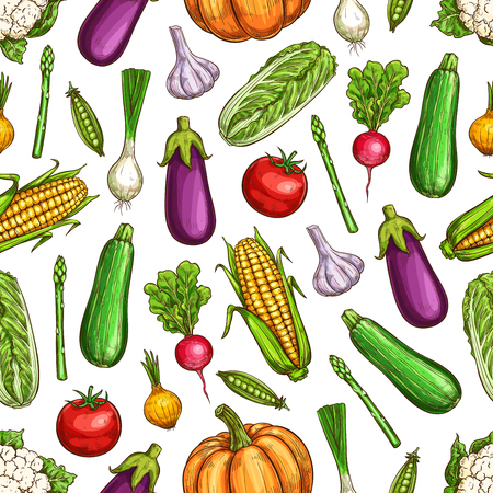 Vegetables seamless pattern of beans and veggies vector background. Onion, tomato and carrot, chinese cabbage, garlic and eggplant, corn, pumpkin and radish, pea, zucchini and cauliflower backdrop Standard-Bild - 123640531