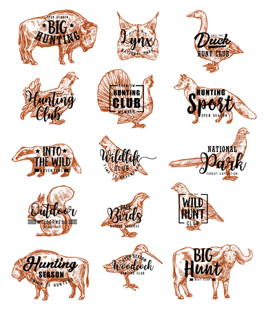 Hunting and open season club hunt animals sketch lettering icons. Vector wild birds duck and partridge or woodcock, badger or fox and dog, buffalo and bison bull, lyx or pheasant and squirrel Stock Vector - 123675824