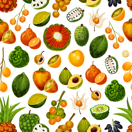 Exotic fruits seamless pattern background. Vector tropical harvest of durian, persimmon or akebia and star apple with champakka or bergamot and tropic naranjilla citrus fruits pattern