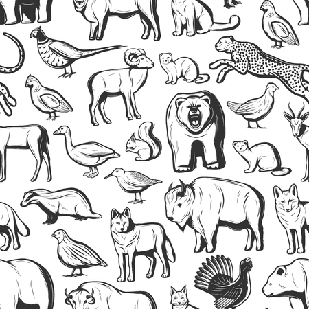 Animals and birds seamless pattern background. Vector African safari hunt cheetah and buffalo, wild beer, badger or fox and wolf, hunting fowl duck, partridge and woodcock with pheasant and squirrel