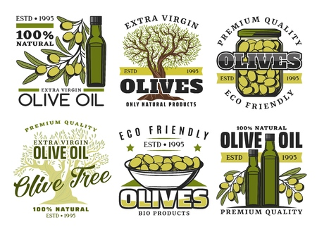 Green olives and olive oil icons. Vector extra virgin olive oil bottle, marinated pickles in glass jar and natural organic olives food, premium quality food package