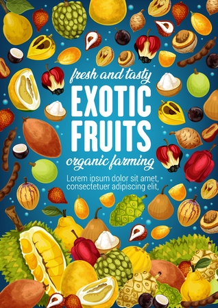 Exotic tropic fruits tamarind, jackfruit or pomelo and quince pear. Tropical fruit agriculture and farm market morinda, ackee apple or pepino and organic jabuticaba Illustration