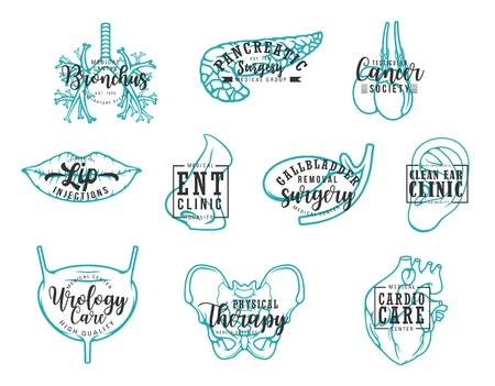 Medical clinic lettering, human body organs calligraphy. Vector medicine surgery and healthcare center, bronchus or pancreatic disease diagnostic, ear and cardio or urology therapy treatment