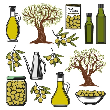 Green olives and olive oil icons. Vector extra virgin olive oil bottle, marinated pickles in glass jar and can, natural organic olives food, premium quality food package symbols