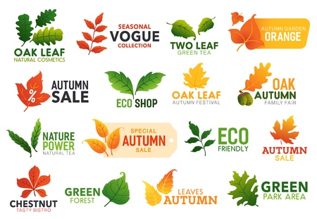 Leaf icons, business or nature and autumn sale promo. Vector green oak, maple and chestnut leaves, eco friendly park, bistro food and natural cosmetics or fall garden festival leaf sign