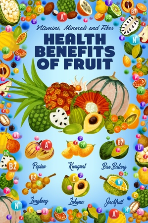 Vitamins in exotic tropical fruits harvest, healthy organic food. Vector multivitamins and minerals in tropic pepino, kumquat or ban balang and longkong, jackfruit or durian and lukuma fruit Иллюстрация