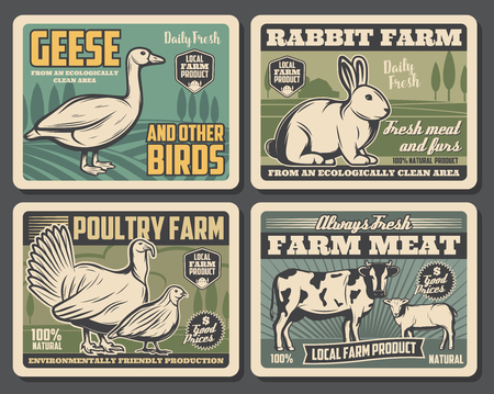 Farm food products, cattle farm meat and fowl food production. Vector vintage farming butchery posters of local domestic ow, turkey and partridge poultry, farm goose and rabbit