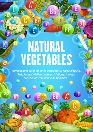 Natural vegetables, organic vegetarian farm veggies food. Vector healthy vitamins in tomato, carrot or corn and cabbage, vegan cucumber, onion and potato, eggplant, cauliflower and broccoli vegetable