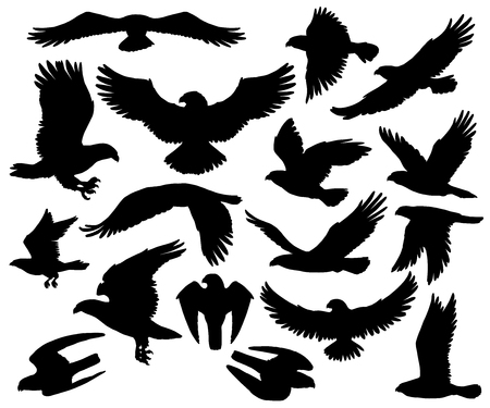 Eagles, falcons and predatory birds heraldry silhouettes. Vettoriali