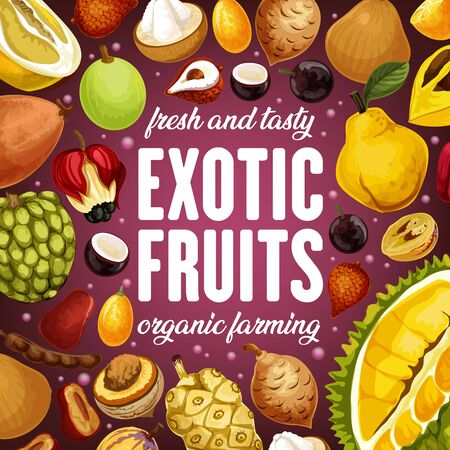 Exotic fruits harvest of durian, tamarind and cherimoya, ackee apple and quince pear. Vector juicy citrus pomelo, kumquat and tropic santol, jabuticaba fruits and tropical ambarella Standard-Bild - 124634513
