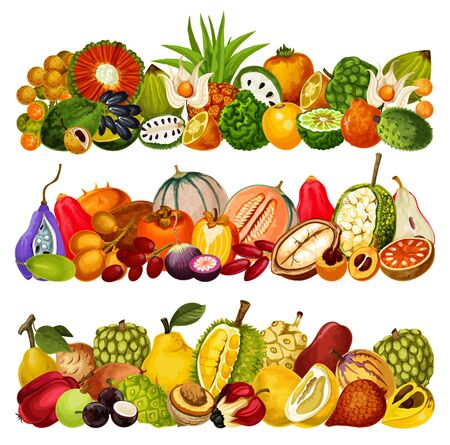 Exotic fruits harvest, tropical farm agriculture pandan, juicy citrus bergamot and akebia, Vector tropic cantaloupe melon, cashew apple with cupuassu, cherimoya and jambolan tropical fruits