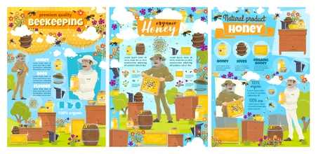 Beekeeping apiary farm and natural honey food production posters with infographic elements. Vector beekeeper with smoker collecting honey in honeycombs from beehives, bees flying on flowers