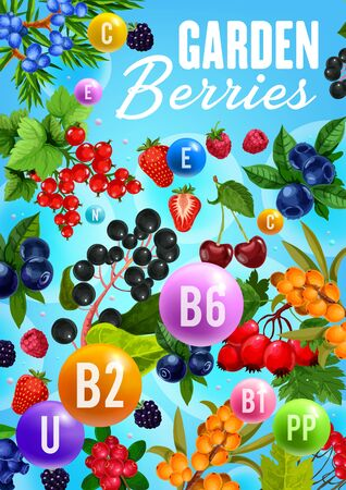 Berries and vitamins, healthy natural organic fruits food. Vector garden cherry, strawberry and raspberry, forest blueberry, rose hip fruits and sea buckthorn, super food black and red currant berry