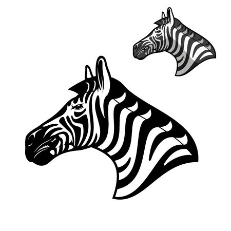 Zebra head icon, wild African animal muzzle. Vector outline zebra horse head symbol of sport team mascot, Safari hunting club badge or zoology animal and wildlife zoo sign