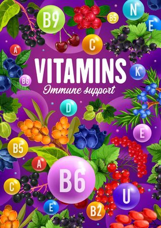 Berries and fruits with immune support vitamins poster of healthy vegetarian nutrition vector design. Cherry, cranberry and blueberry, blackcurrant, honeysuckle and gooseberry, barberry and juniper