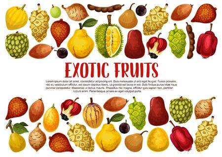 Tropical exotic fruits vector banner with borders of Asian durian, quince and pomelo, salak, tamarind and santol, marula, kumquat and ackee, jabuticaba, sapodilla and sweetsop berries. Food design