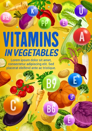 Vitamins and minerals in fresh vegetables and beans vector poster. Tomato, carrot and broccoli, onion, cabbage and radish, zucchini, pepper, pea and pumpkin, vegetarian food health benefits design Illustration