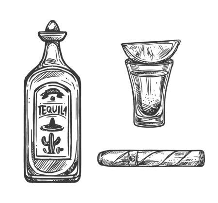 Bocetos festivos del Cinco de Mayo de tequila, lima y cigarro de fiesta mexicana. Botella de vector y vaso de bebida de alcohol de cactus de agave y hojas de tabaco enrolladas. Diseño del aniversario de la Batalla de Puebla Ilustración de vector