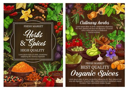 Spices and culinary herbs, vegetarian seasoning and natural condiments. Rosemary, mint and basil, vanilla, cinnamon and chilli pepper, ginger, cardamom and bay leaf, thyme, star anise, nutmeg, saffron Zdjęcie Seryjne - 128162108
