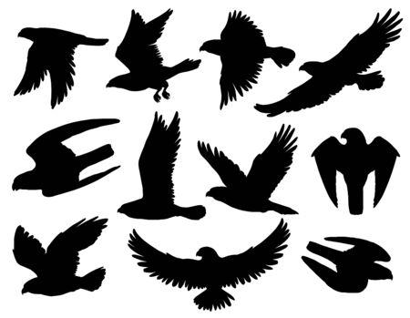 Aquila, falco e falco sagome nere con uccelli rapaci che volano e cacciano. Animali araldici con ali spiegate e artigli d'attacco, simboli patriottici americani, emblemi di falconeria Vettoriali
